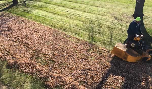 Yard Clean up by Advance Lawn Service Company, Hartford WI