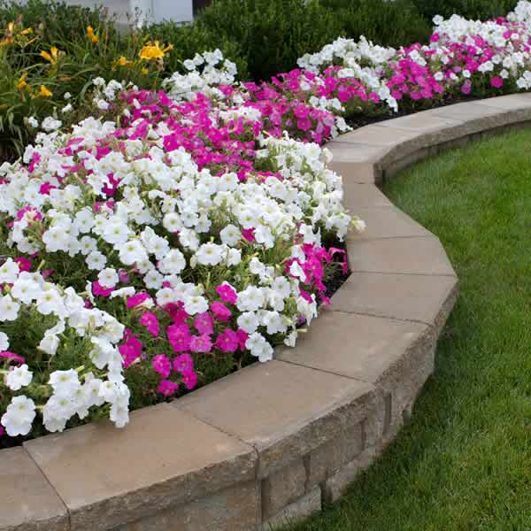 Landscaping - Advance Lawn Service Company