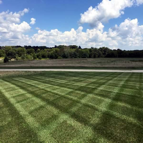 Advance lawn service company hartford wisconsin advanced for Lawn care companies