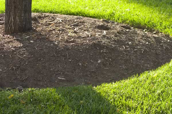 Landscape Design - Edging from Advance Lawn Service Company - Hartford WI