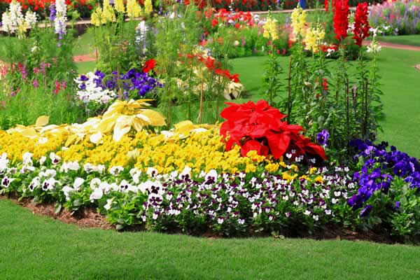 Landscape Design - Flower Beds Services from Advance Lawn Service Company - Hartford WI