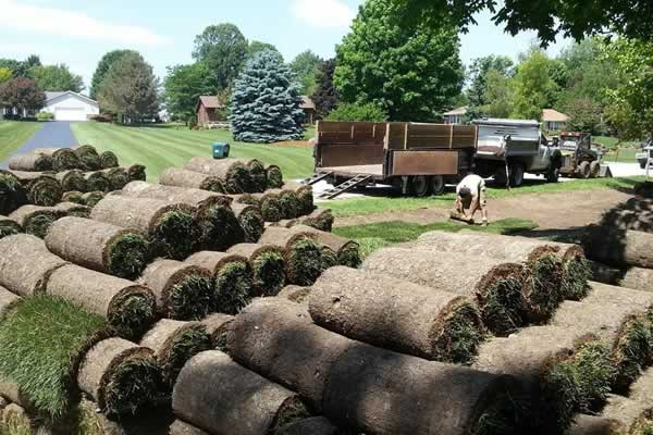 Landscape Design Lawn Installation by Advance Lawn Service Company,  Hartford WI - Landscape Design: Lawn Installation: Sod Installation: Hartford, WI