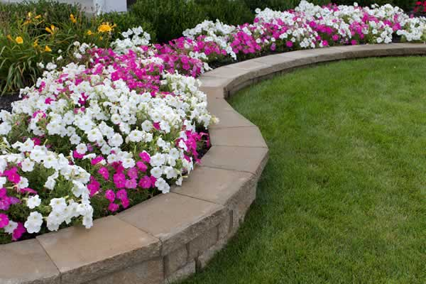 Landscaping Services - Advance Lawn Service Company