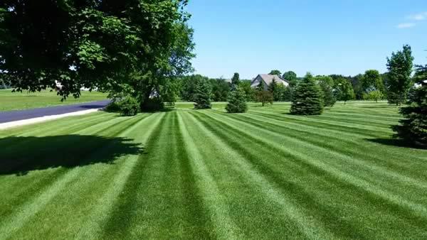 beautiful lawn - Advance Lawn Care Services